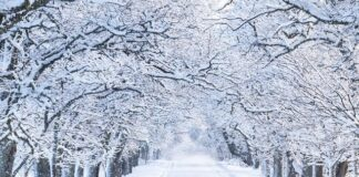 bajka o drodze - zima